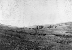 Bondietti Ranch (now Hagmaier Ranch) in Olema Valley looking N in 1906. Randall ranch in far distance. HWY 1 on right. Wide sweeping view of valley with hills in background. Ranch complex in center field with trees clumped around it.