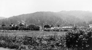 Hagmaier Ranch wide view from State Highway 1 showing landscape with fencing, vegetation, house, and ranch buildings in background. Tree covered hills in distance.