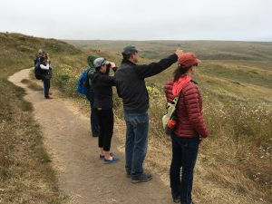 Trailside discussion, Tomales Point trail. (Photo by Allison Kidder)