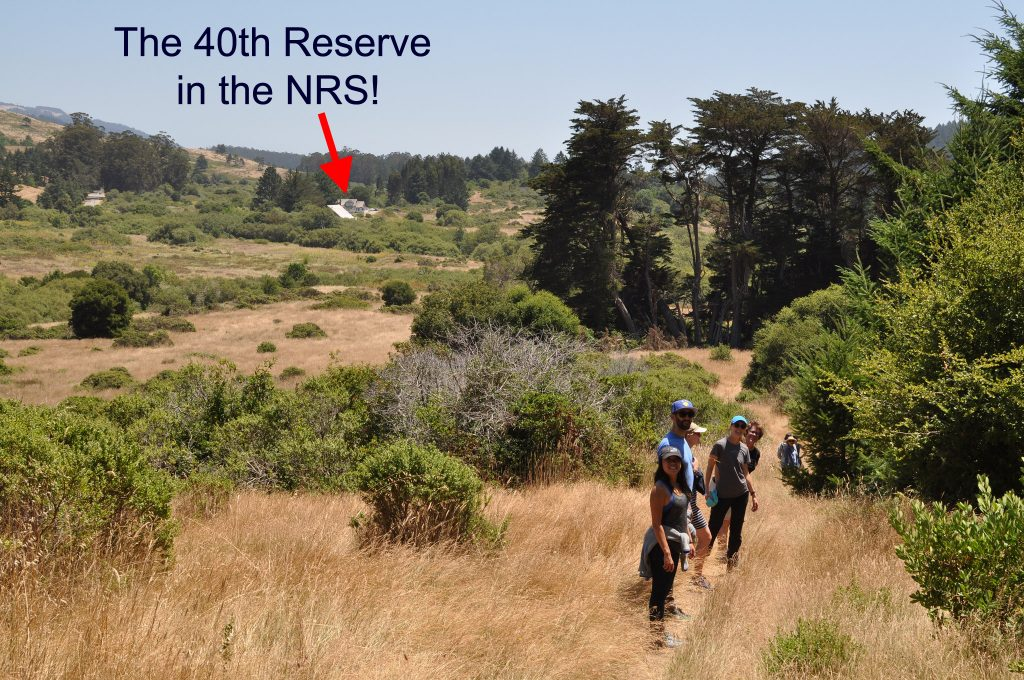 Point Reyes 40th UC NRS Reserve